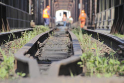 Understanding the 3 Federal Acts That Protect Railroad Workers